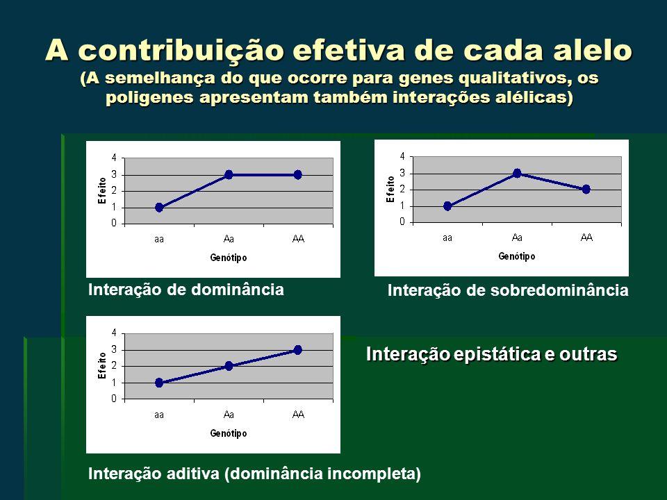 A contribuição efetiva de cada alelo (A semelhança do que ocorre para genes qualitativos, os poligenes apresentam também interações alélicas)