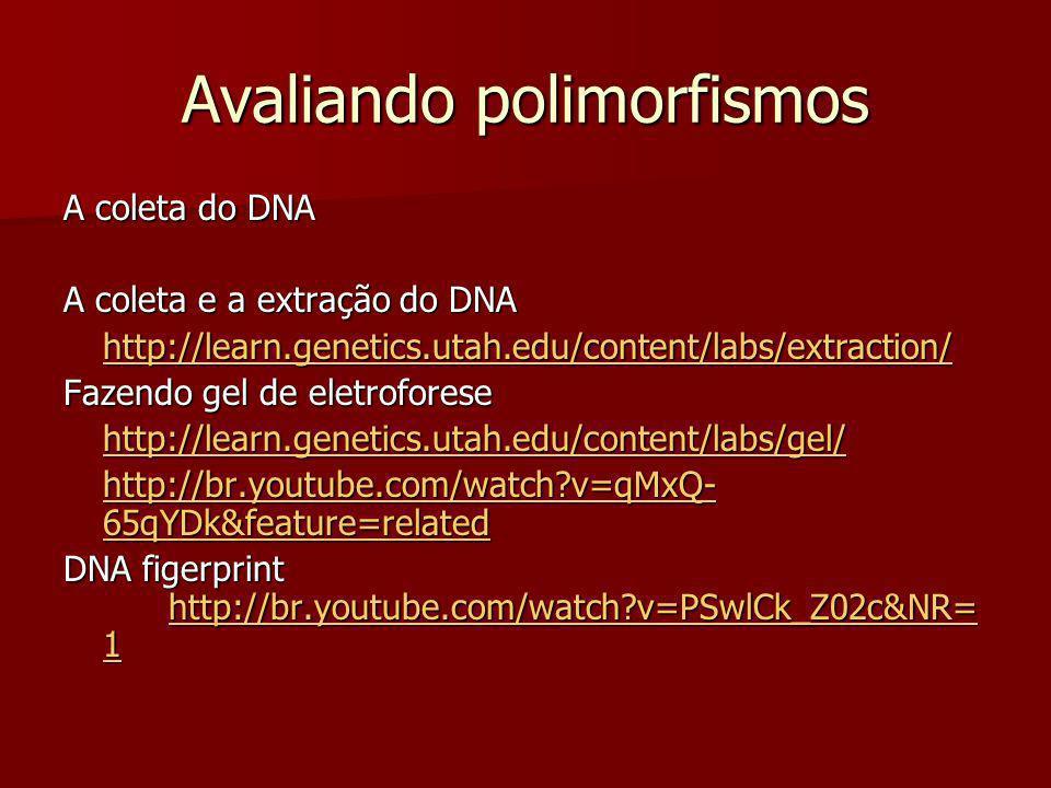 Avaliando polimorfismos