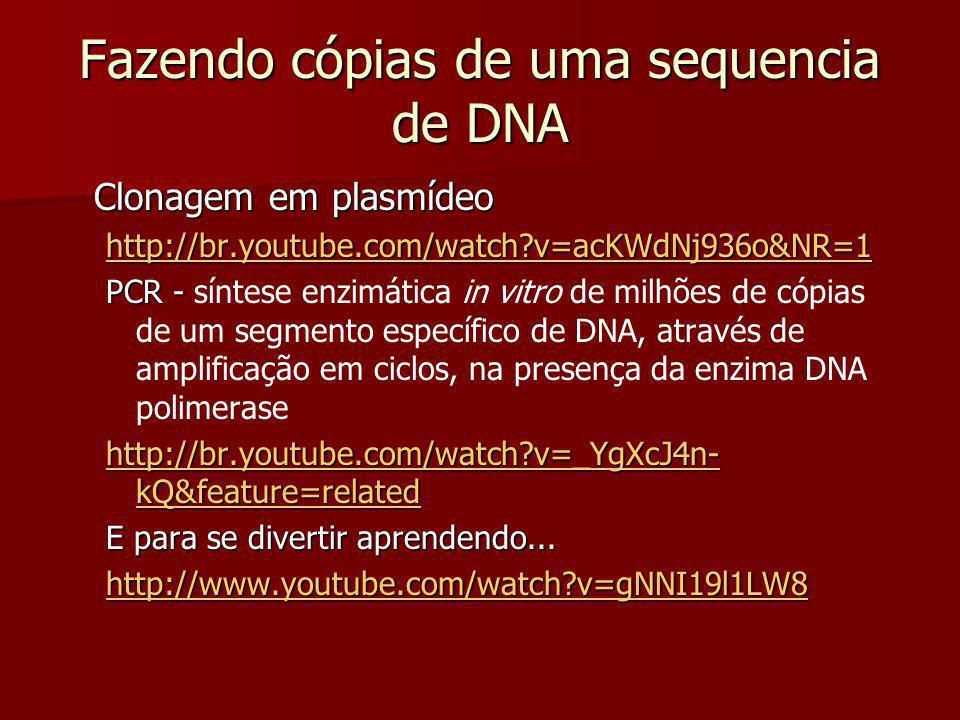 Fazendo cópias de uma sequencia de DNA