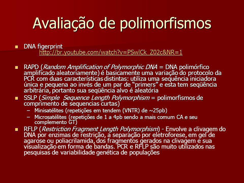 Avaliação de polimorfismos