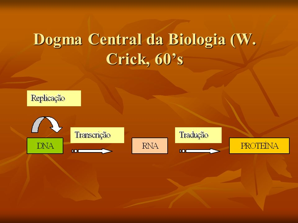 Dogma Central da Biologia (W. Crick, 60's