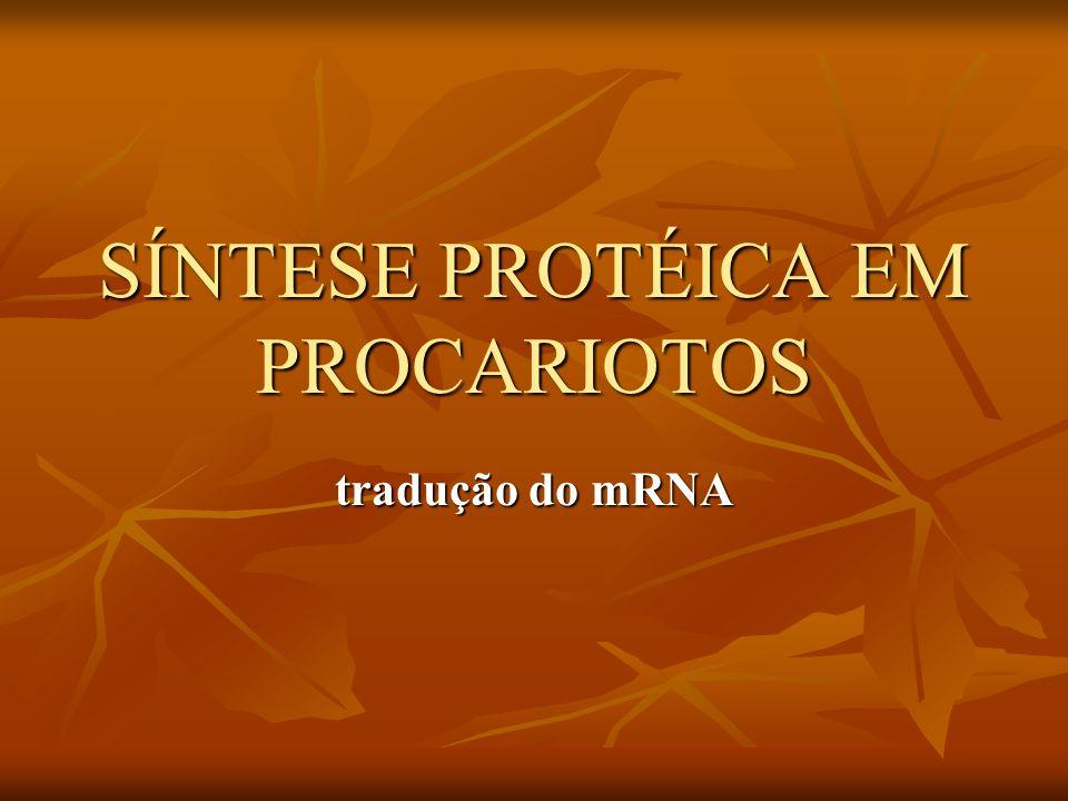 SÍNTESE PROTÉICA EM PROCARIOTOS