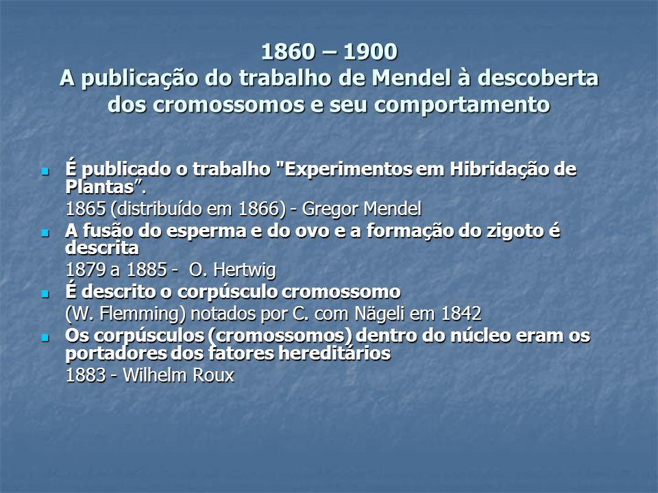 1860 – 1900 A publicação do trabalho de Mendel à descoberta dos cromossomos e seu comportamento