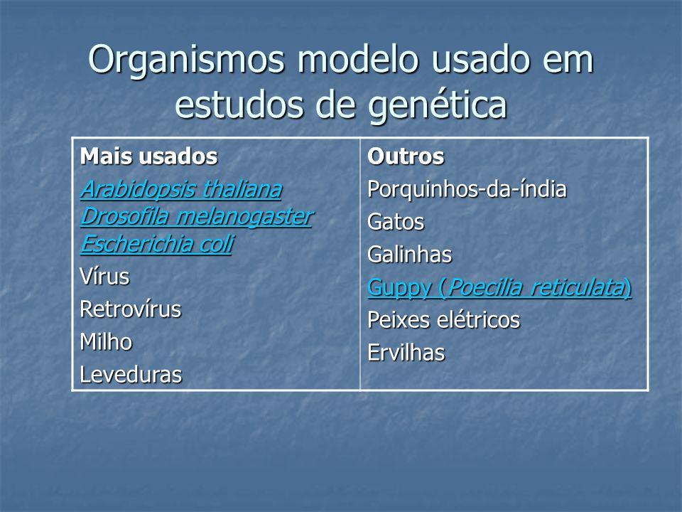Organismos modelo usado em estudos de genética