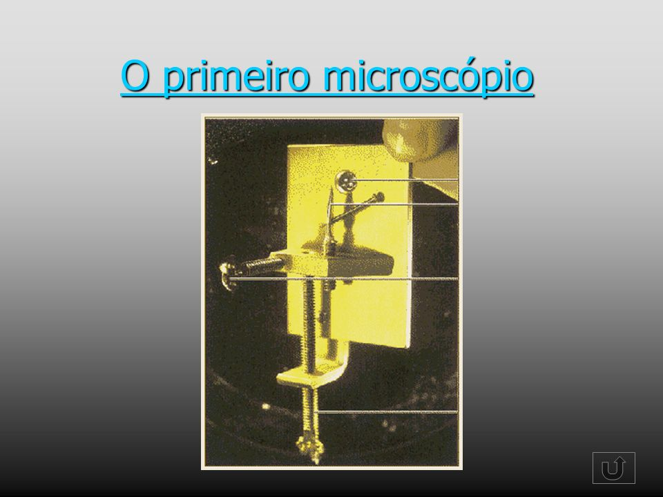 O primeiro microscópio