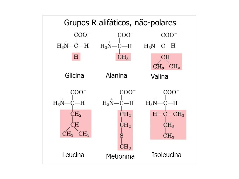 Grupos R alifáticos, não-polares