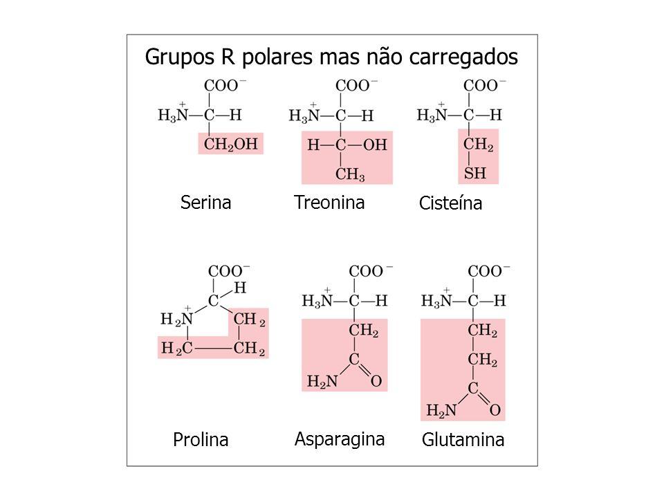 Grupos R polares mas não carregados