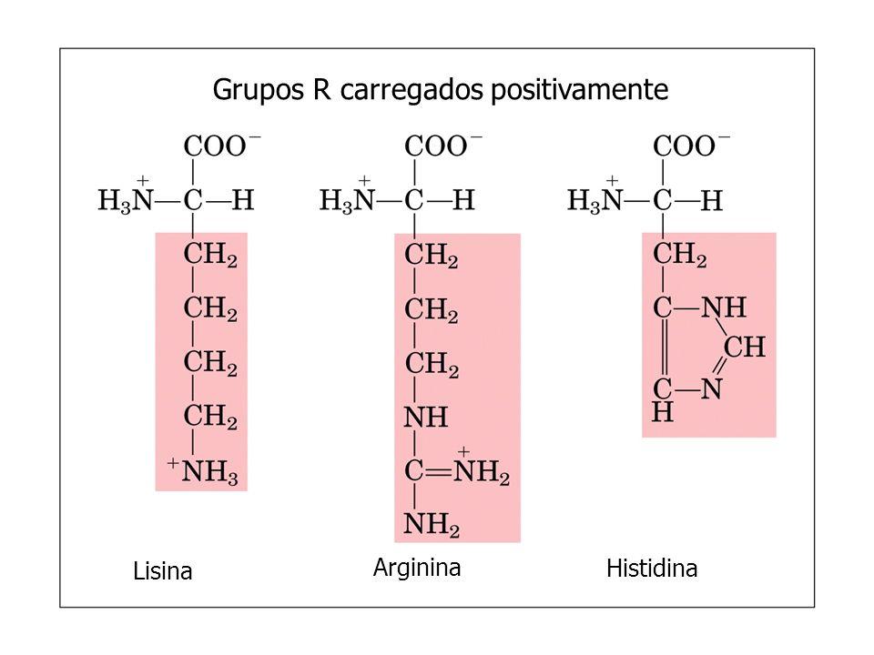Grupos R carregados positivamente