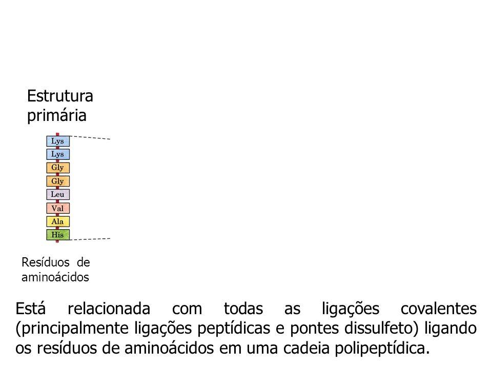 Estrutura primária Resíduos de aminoácidos.