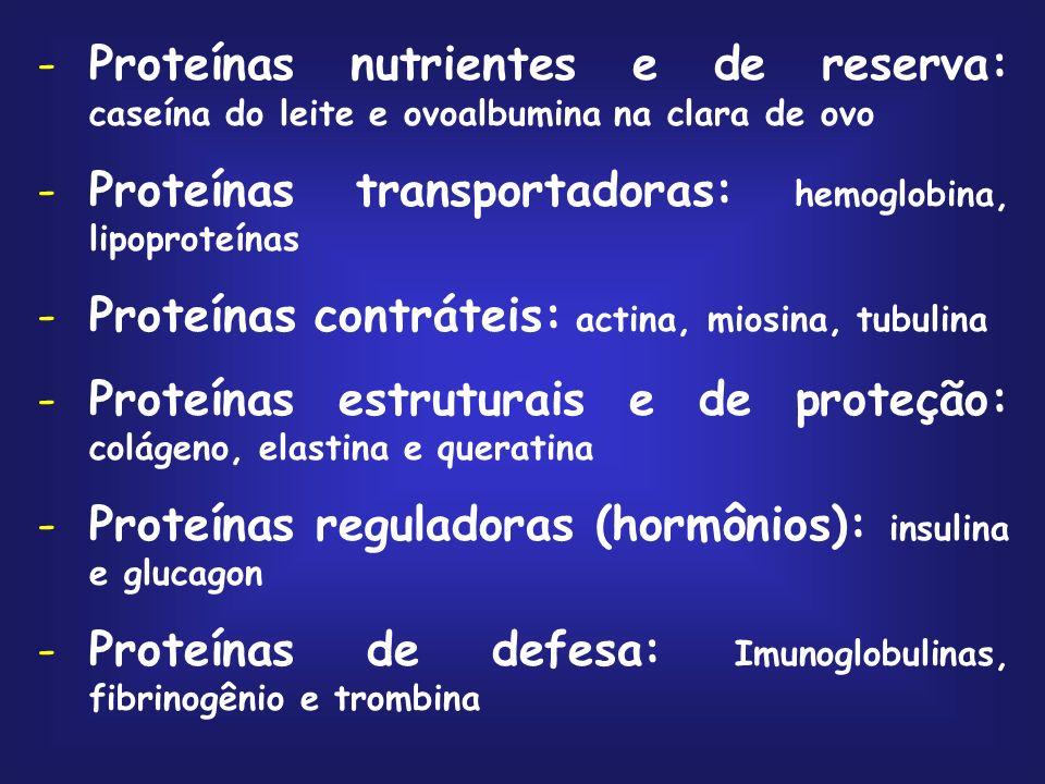 Proteínas nutrientes e de reserva: caseína do leite e ovoalbumina na clara de ovo