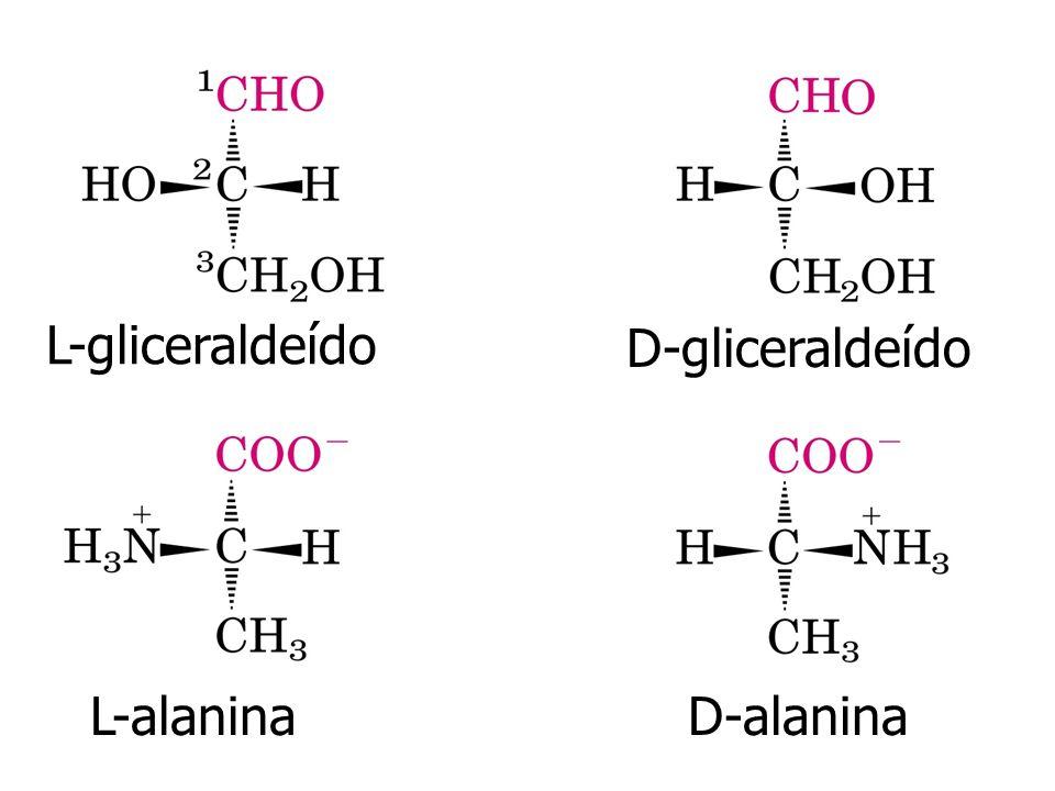 L-gliceraldeído D-gliceraldeído L-alanina D-alanina