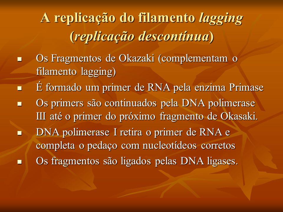 A replicação do filamento lagging (replicação descontínua)