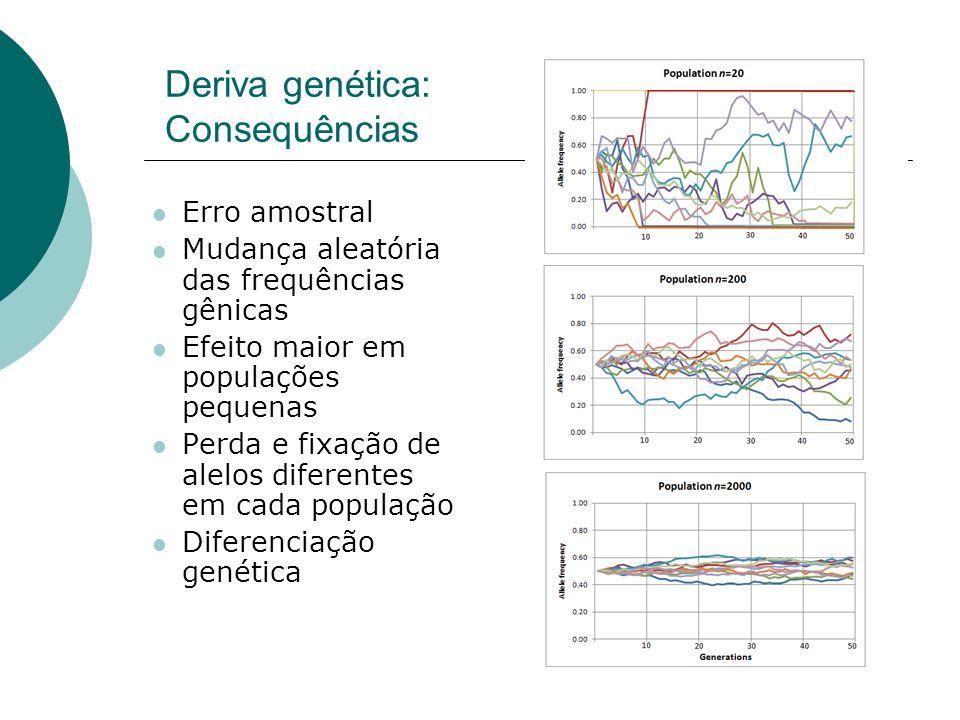 Deriva genética: Consequências