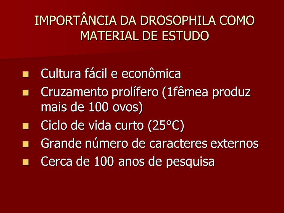 IMPORTÂNCIA DA DROSOPHILA COMO MATERIAL DE ESTUDO