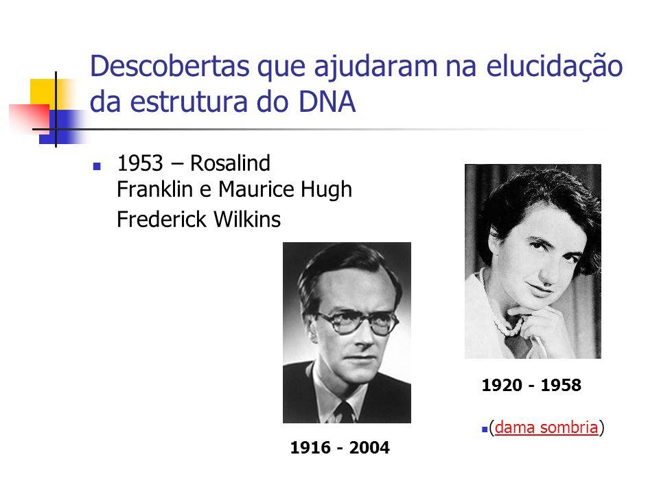 Descobertas que ajudaram na elucidação da estrutura do DNA