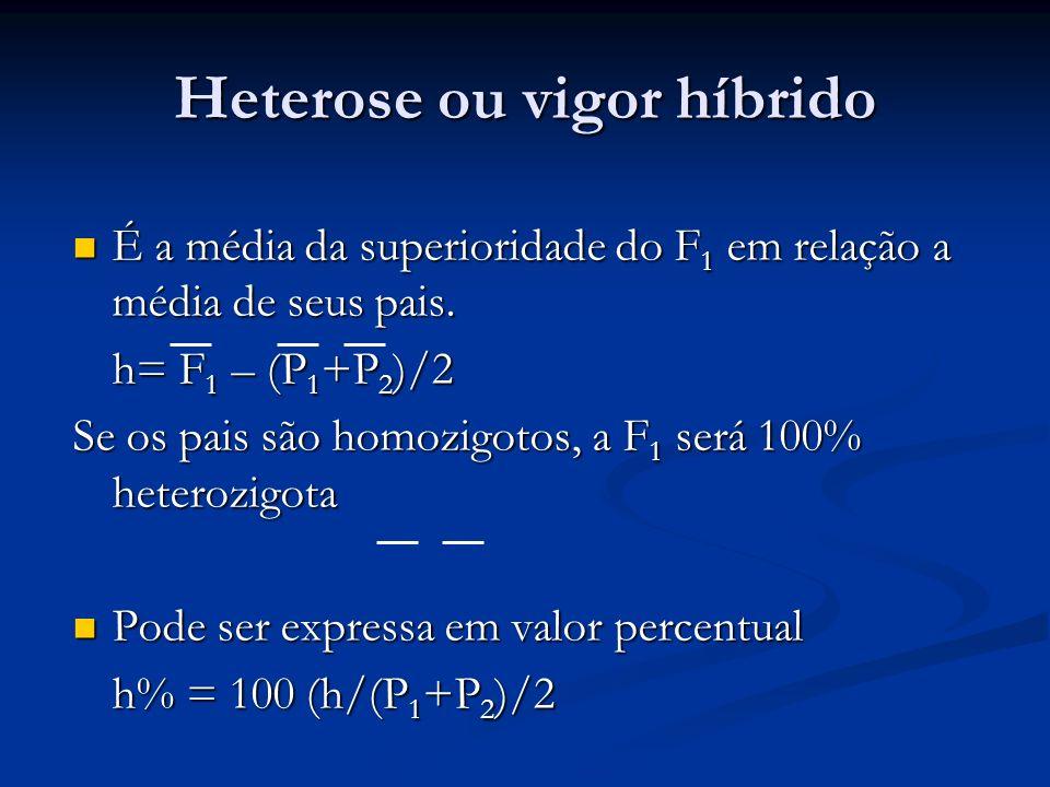 Heterose ou vigor híbrido