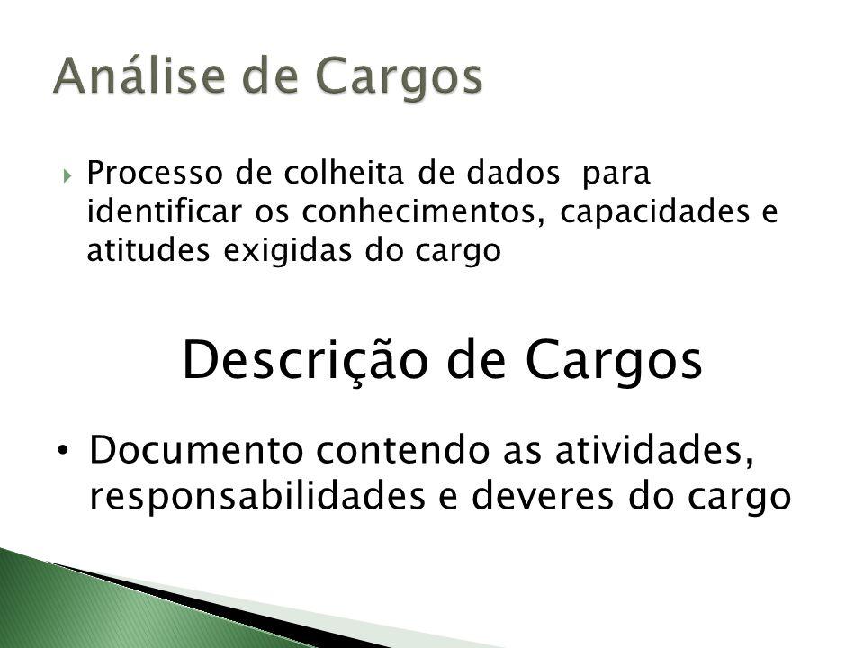 Descrição de Cargos Análise de Cargos