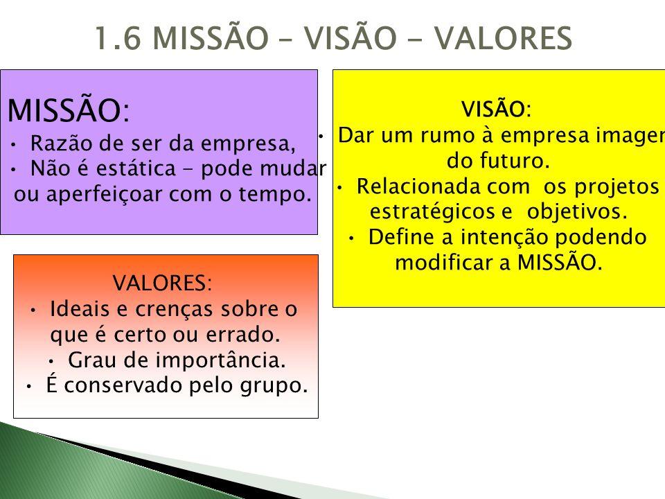 1.6 MISSÃO – VISÃO - VALORES