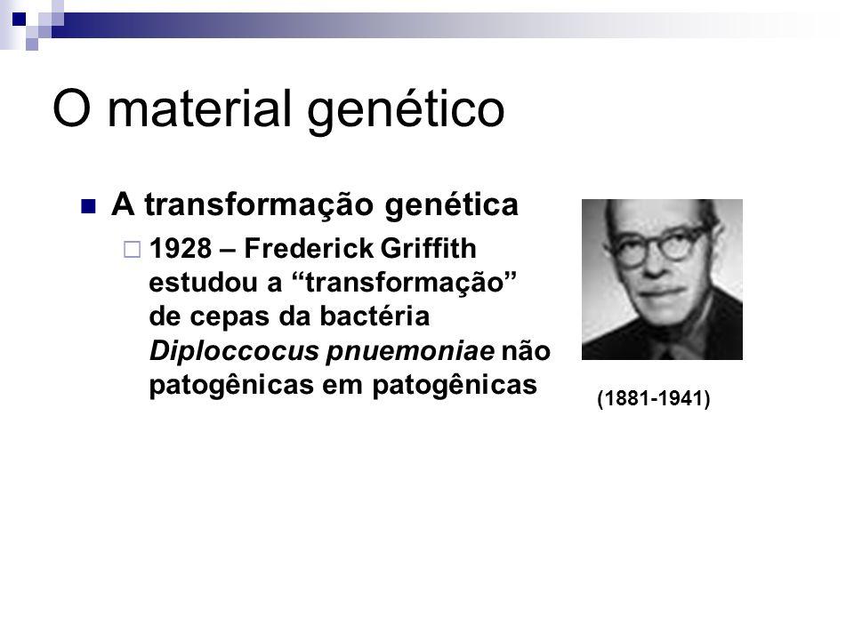 O material genético A transformação genética