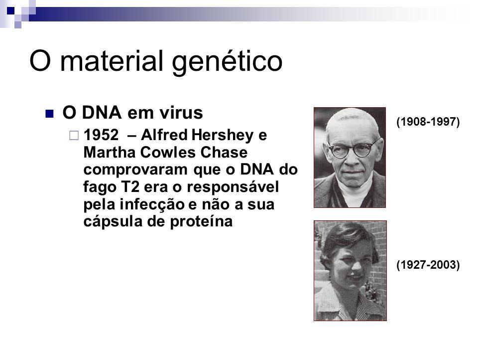 O material genético O DNA em virus