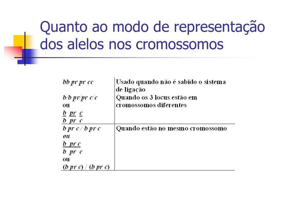 Quanto ao modo de representação dos alelos nos cromossomos