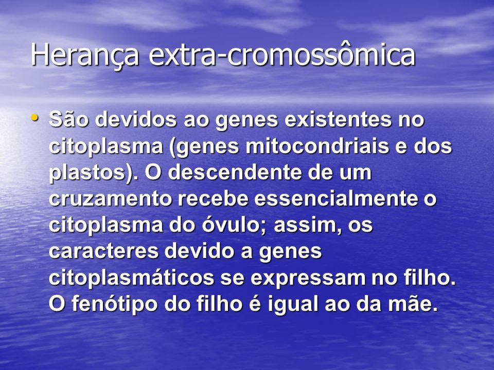Herança extra-cromossômica