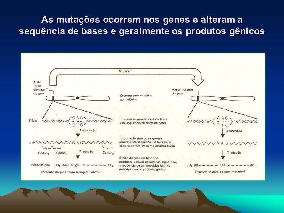 As mutações ocorrem nos genes e alteram a sequência de bases e geralmente os produtos gênicos