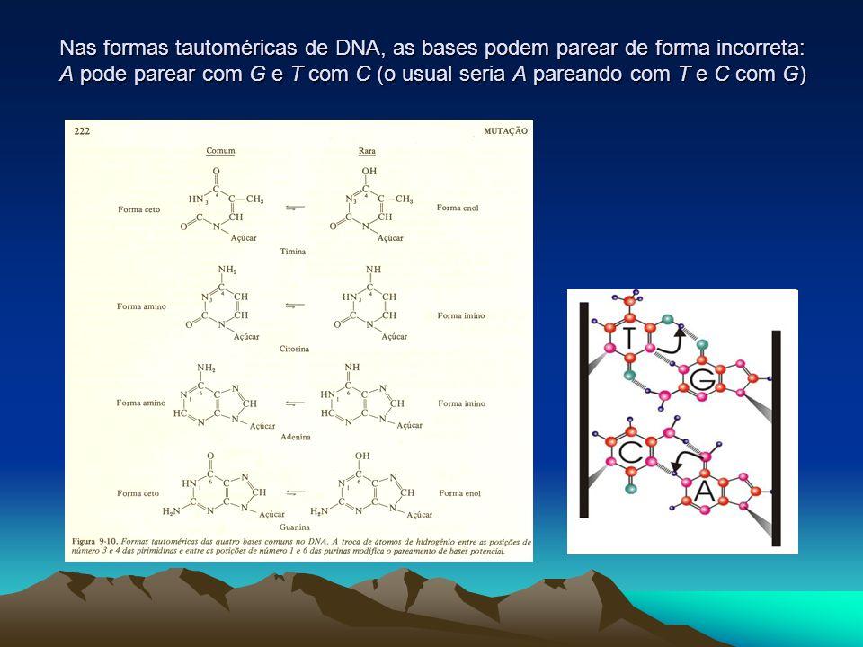 Nas formas tautoméricas de DNA, as bases podem parear de forma incorreta: A pode parear com G e T com C (o usual seria A pareando com T e C com G)