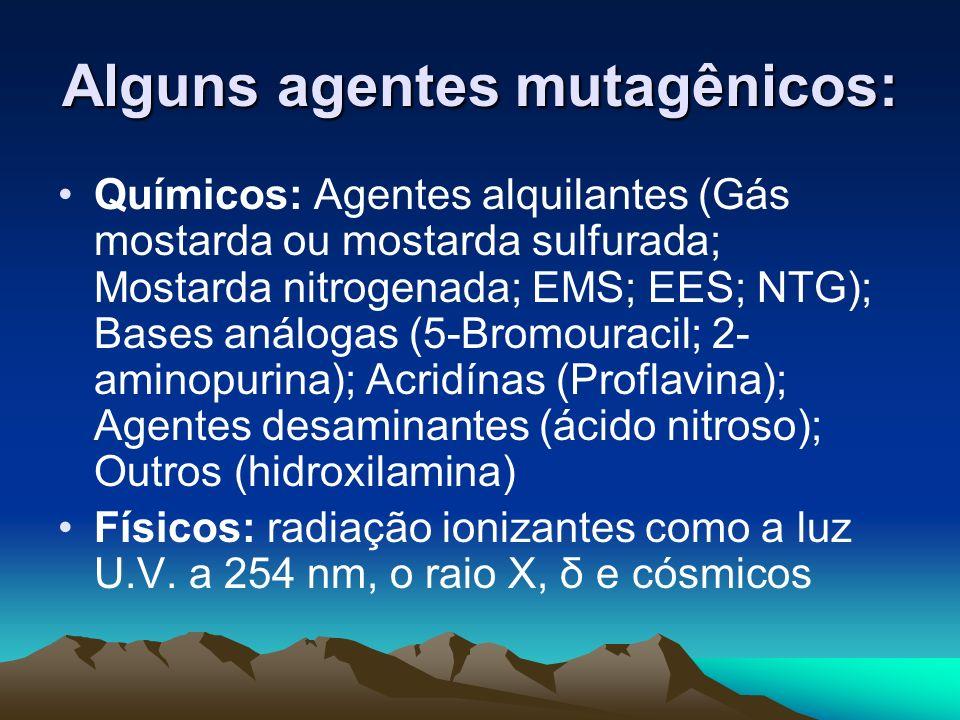 Alguns agentes mutagênicos: