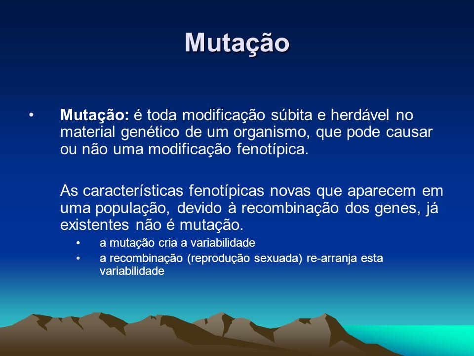 MutaçãoMutação: é toda modificação súbita e herdável no material genético de um organismo, que pode causar ou não uma modificação fenotípica.