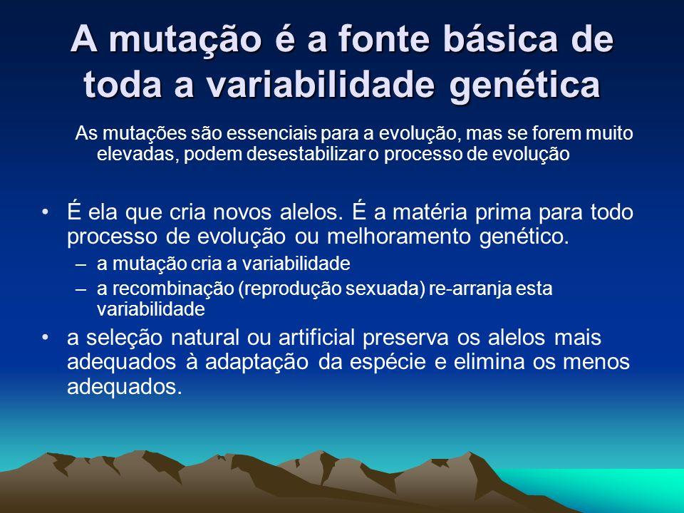 A mutação é a fonte básica de toda a variabilidade genética