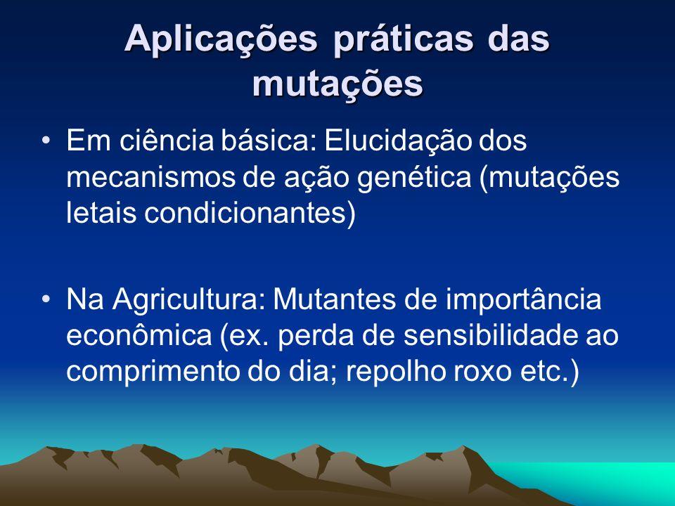 Aplicações práticas das mutações