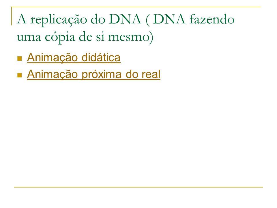 A replicação do DNA ( DNA fazendo uma cópia de si mesmo)