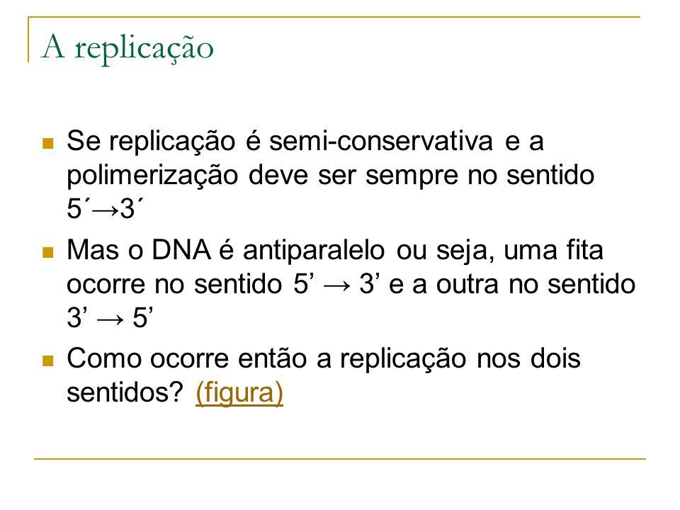 A replicação Se replicação é semi-conservativa e a polimerização deve ser sempre no sentido 5´→3´