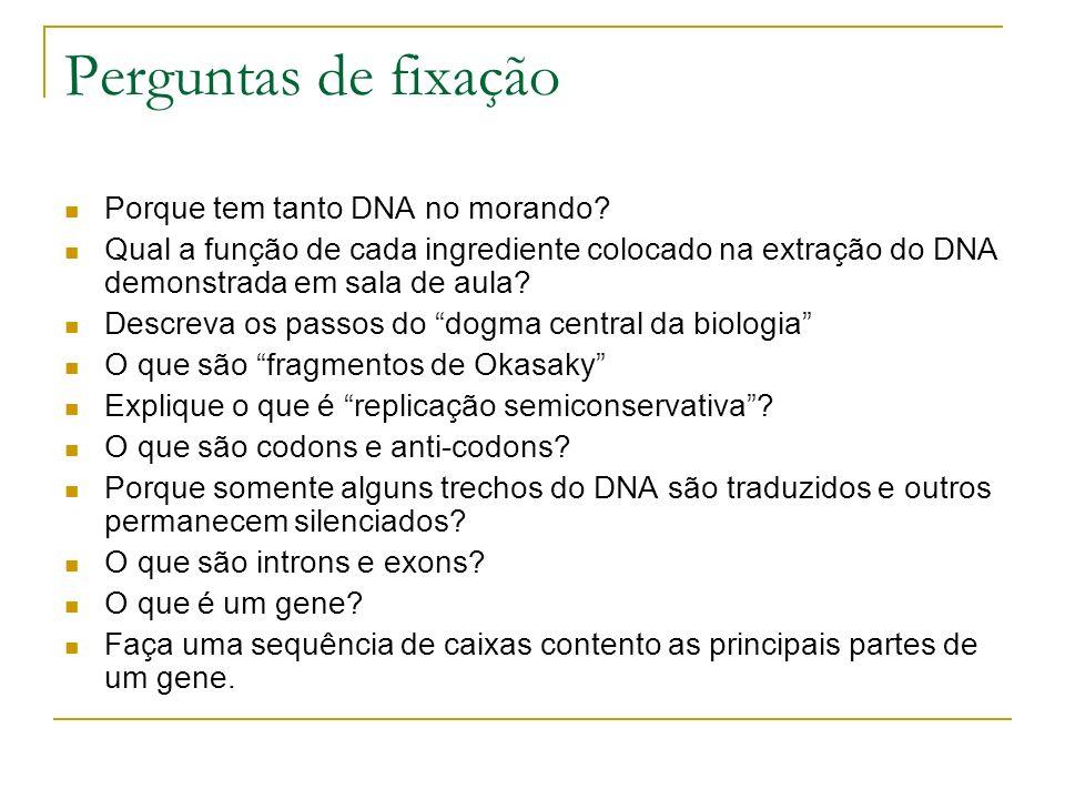 Perguntas de fixação Porque tem tanto DNA no morando