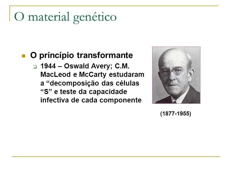 O material genético O princípio transformante