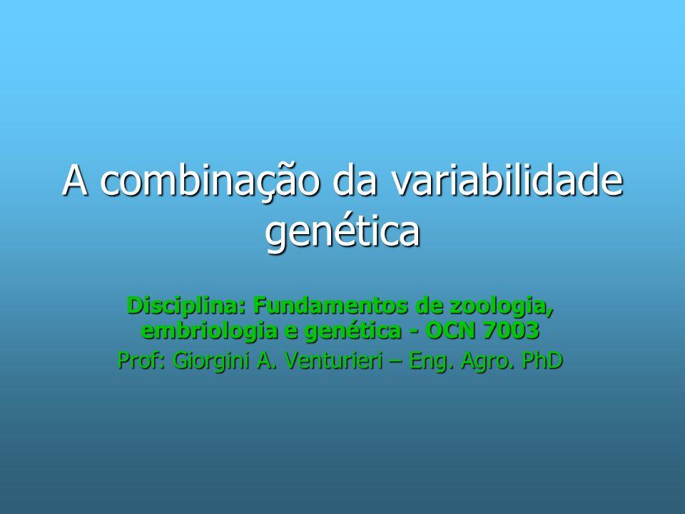 A combinação da variabilidade genética