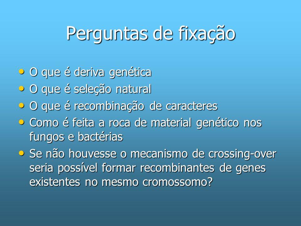 Perguntas de fixação O que é deriva genética O que é seleção natural