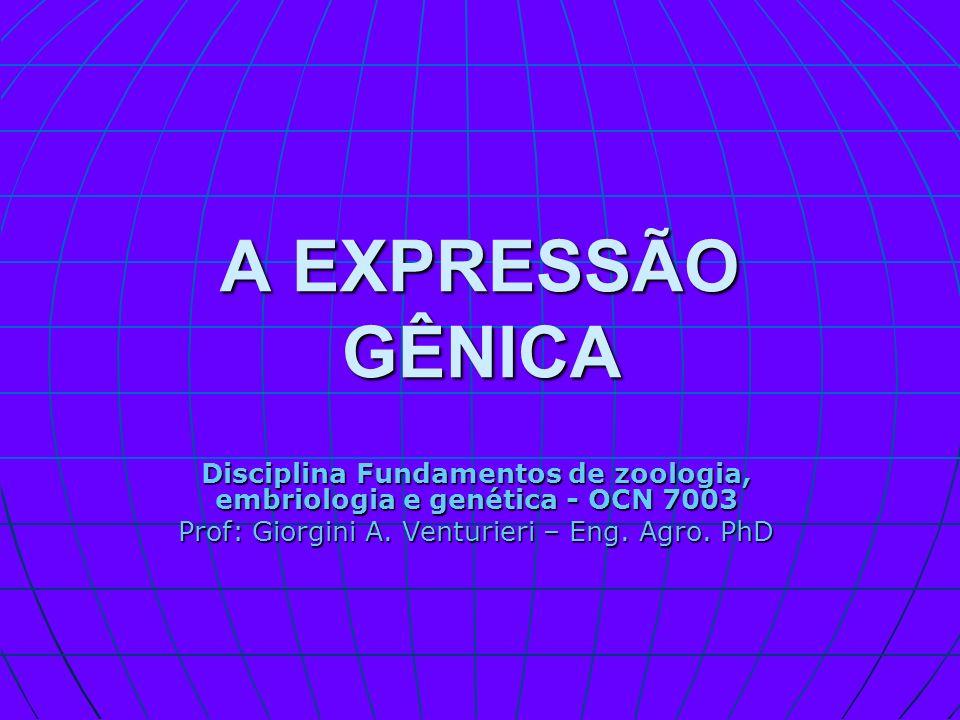 Disciplina Fundamentos de zoologia, embriologia e genética - OCN 7003