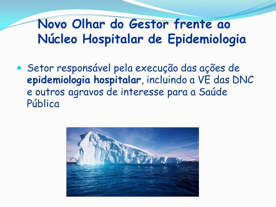 Novo Olhar do Gestor frente ao Núcleo Hospitalar de Epidemiologia