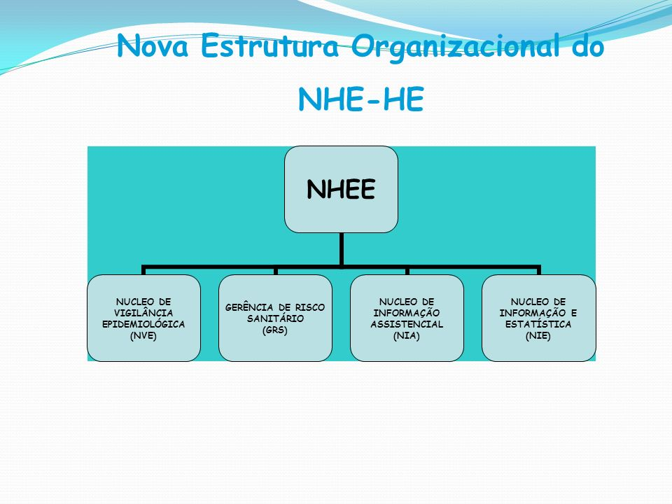 Nova Estrutura Organizacional do