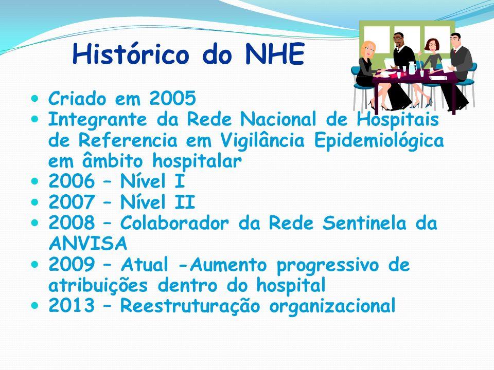 Histórico do NHE Criado em 2005