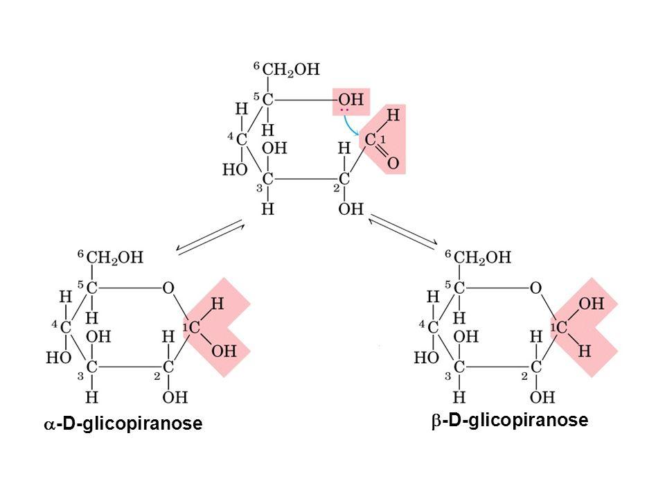 -D-glicopiranose -D-glicopiranose