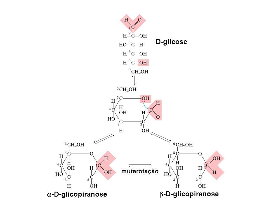 D-glicose -D-glicopiranose -D-glicopiranose
