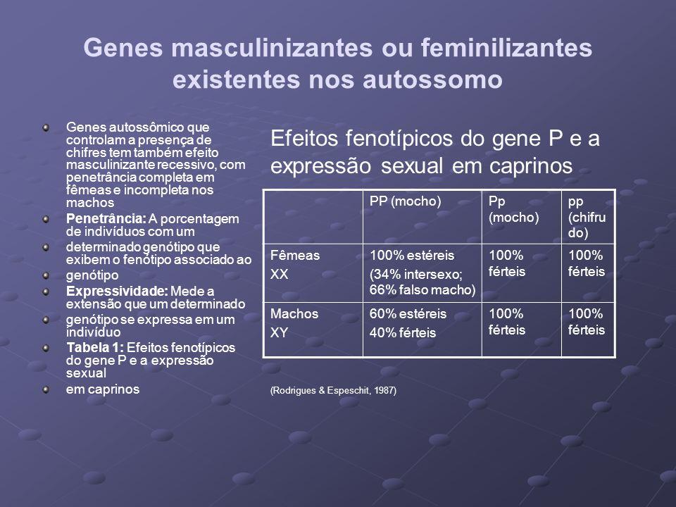 Genes masculinizantes ou feminilizantes existentes nos autossomo