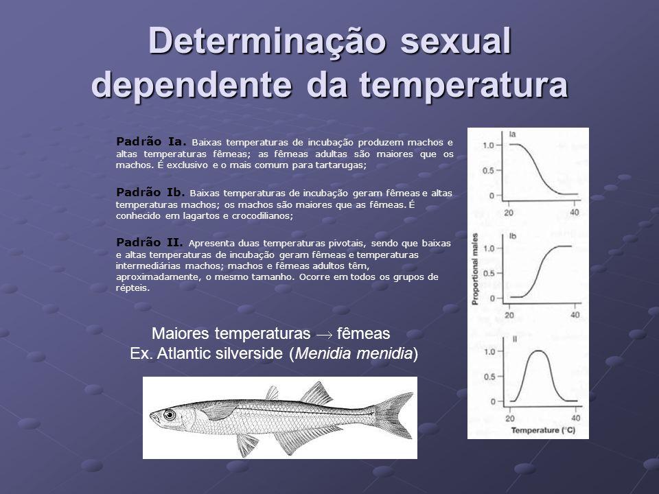 Determinação sexual dependente da temperatura