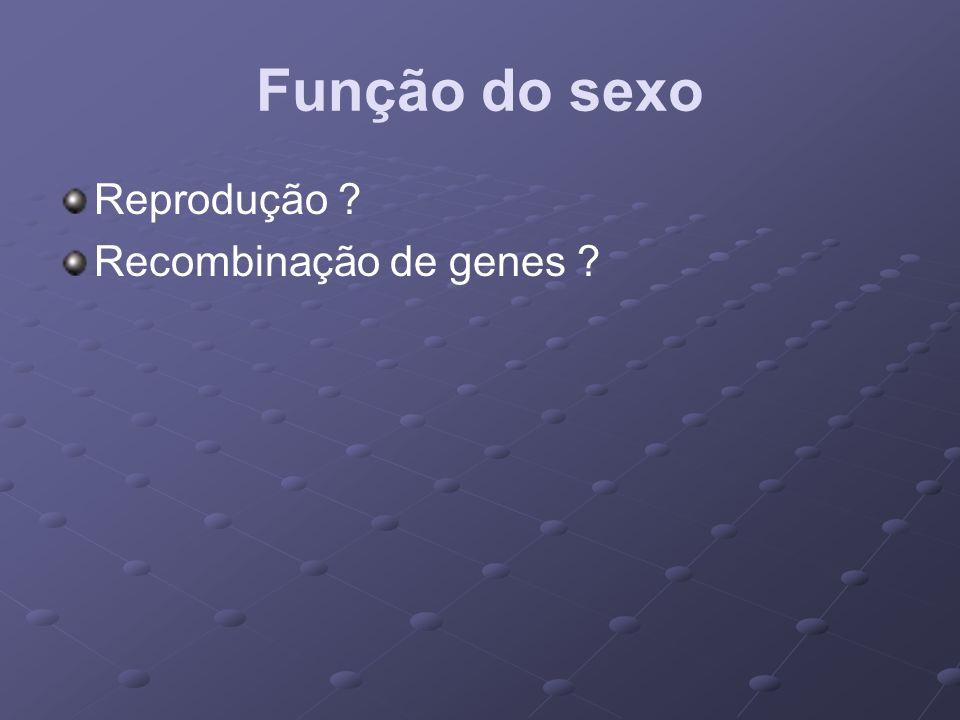 Função do sexo Reprodução Recombinação de genes