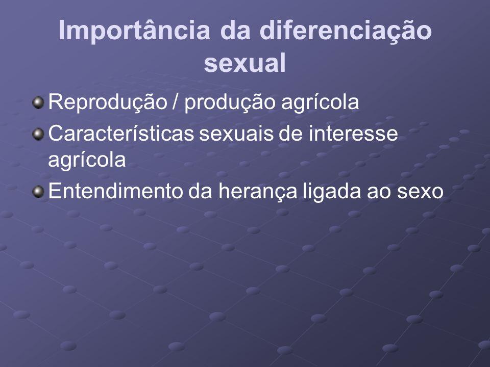 Importância da diferenciação sexual