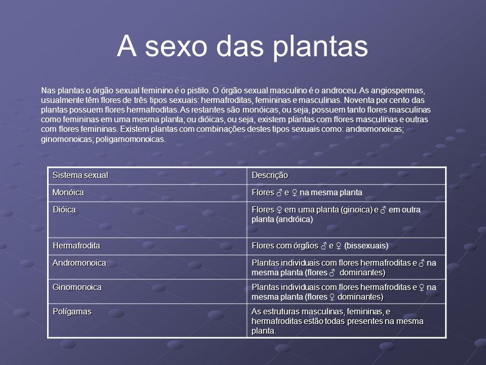 A sexo das plantas
