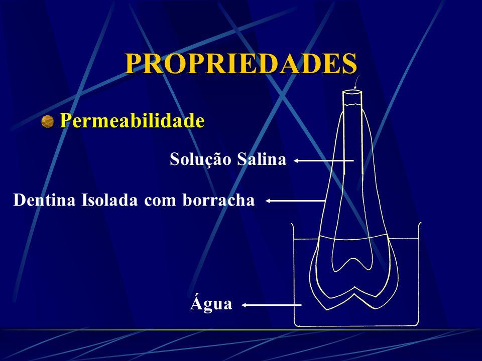 PROPRIEDADES Permeabilidade Solução Salina